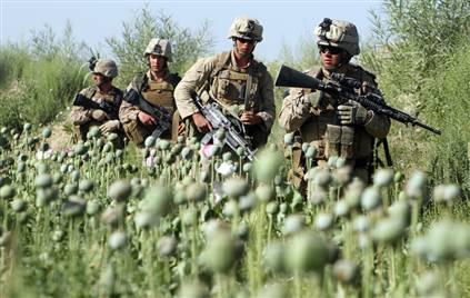 Soldatii NATO din Afganistan, potentiali aliati ai Kremlinului in razboiul antidrog