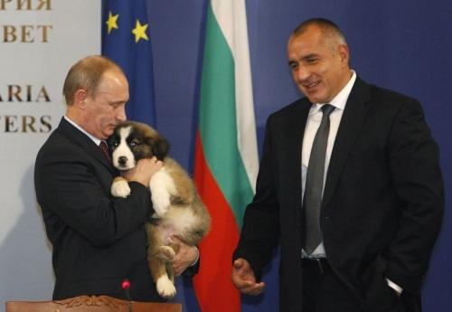 russia-prime-minister-putin-hugs-bulgarian-shepherd-dog-bulgaria-prime-minister-borisov-looks-sofia