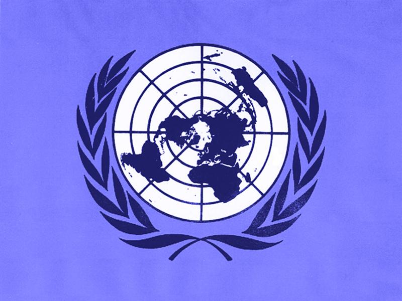 Organizatia Natiunilor Unite, principala organizatie internationala