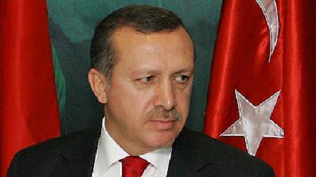 erdogan 87566