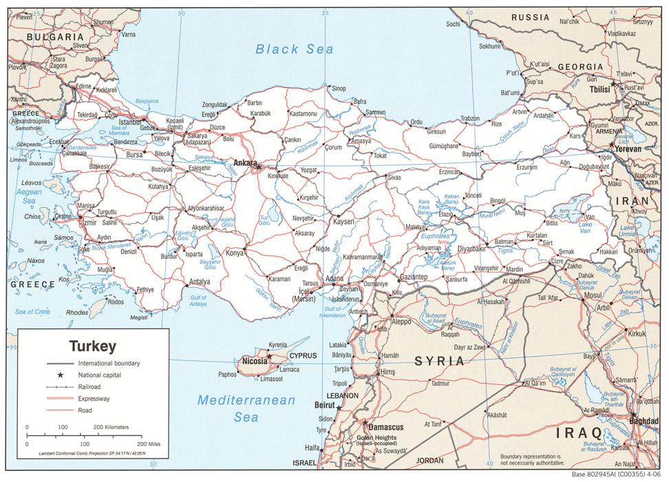 Turcia, baza a traficului ilegal de organe