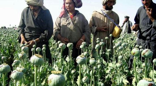 afganistan heroina