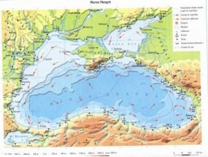 Marea Neagra 7542