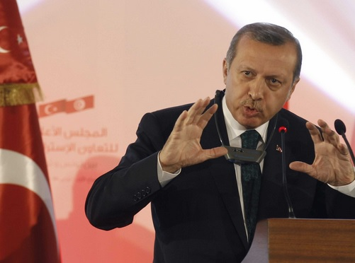 erdogan dm34