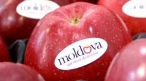 mere-moldova