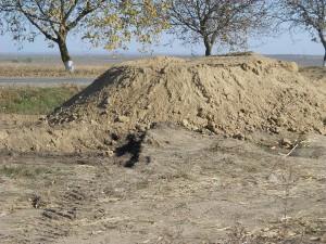 dig Transnistria Dorotcaia