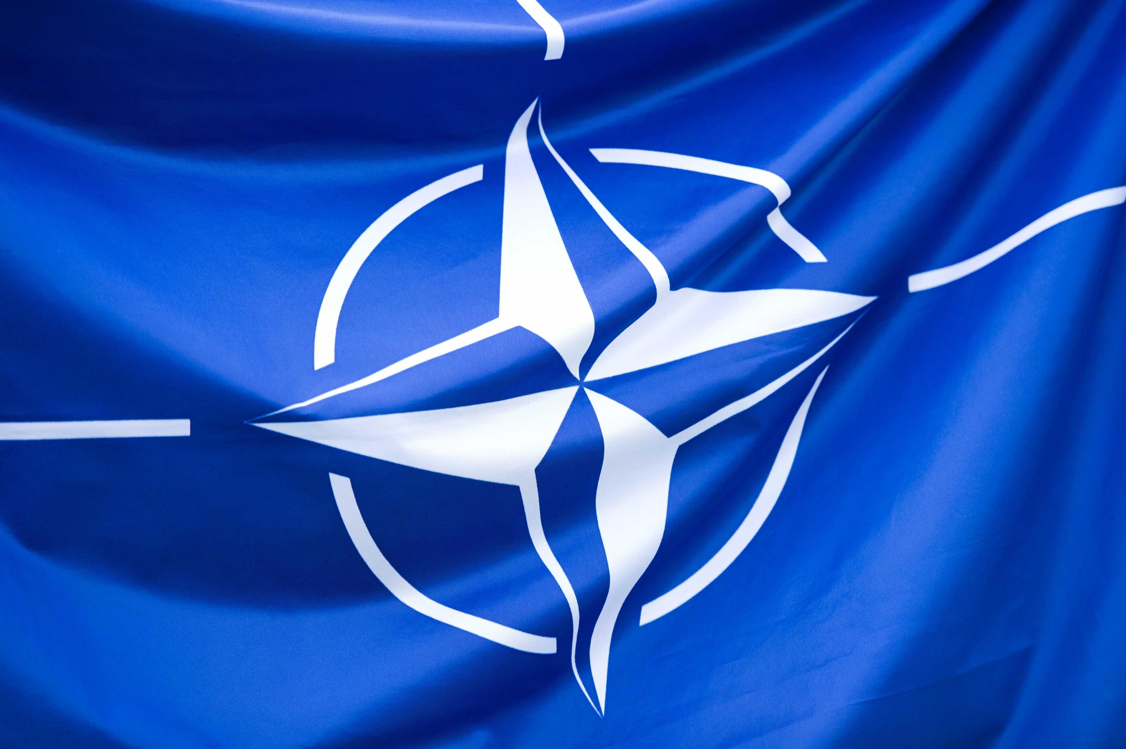 Aderarea Ucrainei la NATO, platformă electorală pentru liderul de la Kiev, Petro Poroșenko