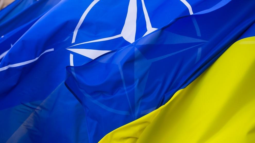 Ambițiile euroatlantice ale Kievului sunt bine văzute de majoritatea statelor Alianței
