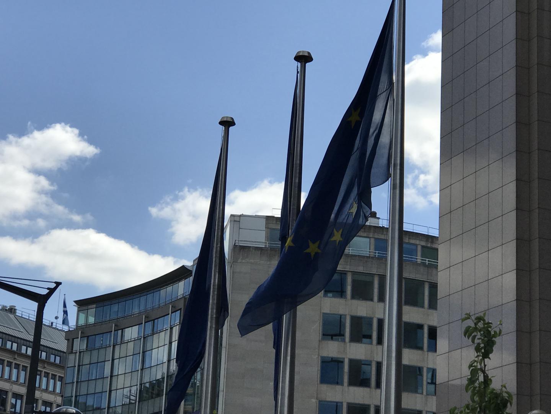 Uniunea Europeană, îngrijorată de situația din Belarus