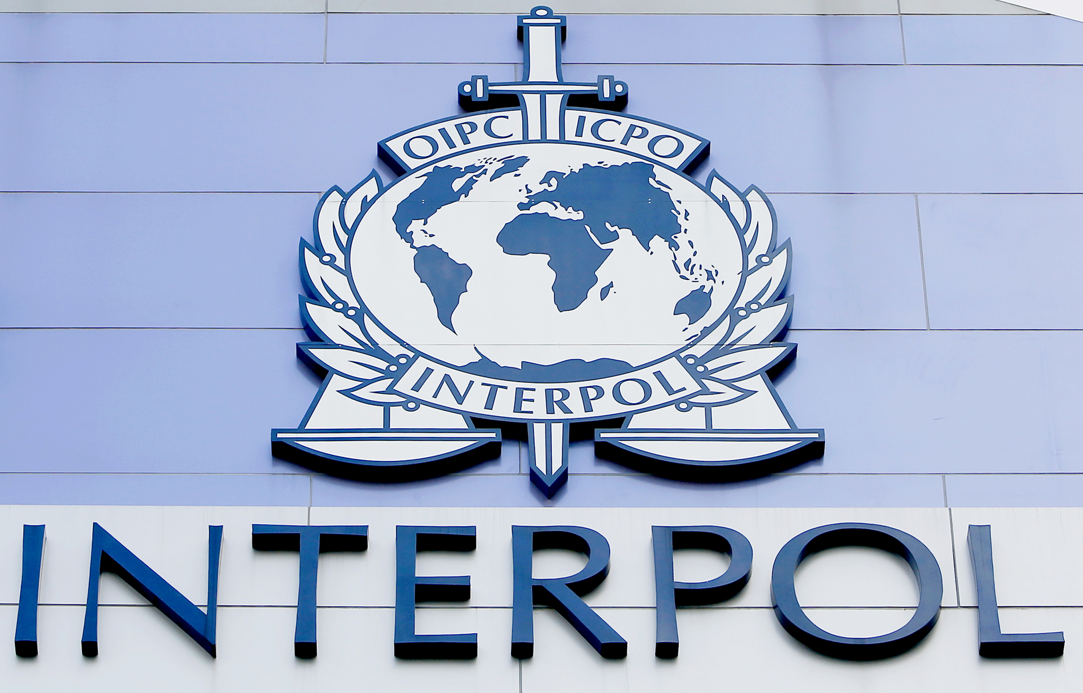 Interpol, camp de batalie politica